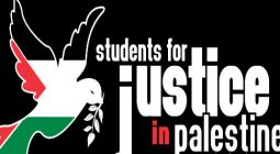 Palestinians support 1